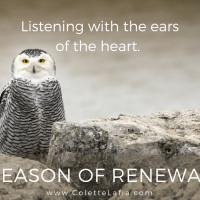 7 Season of renewal