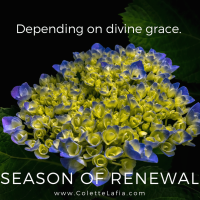 9 Season of renewal