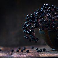 Black elderberries (Sambucus nigra) in a bowl, dark rustic wood