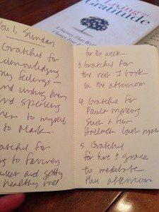 gratitude journal_inside