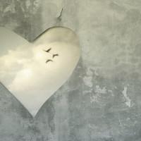 THe Heart Speaks
